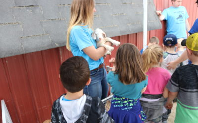 Day on the Farm Provides Agriculture Education